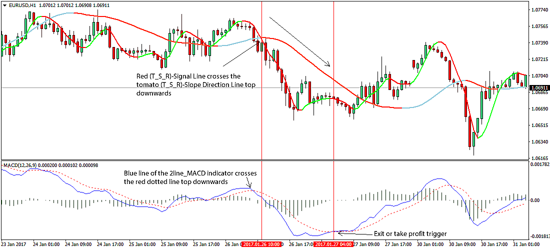 2 Line MACD Indicator For MT4