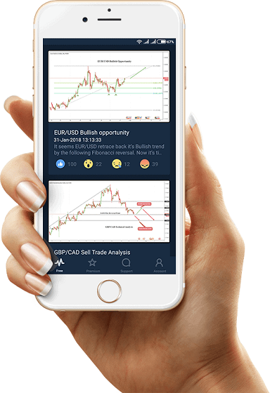traderpulse review